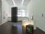 Installation view of Thought forms at Meessen De Clercq, Brussels - 2010